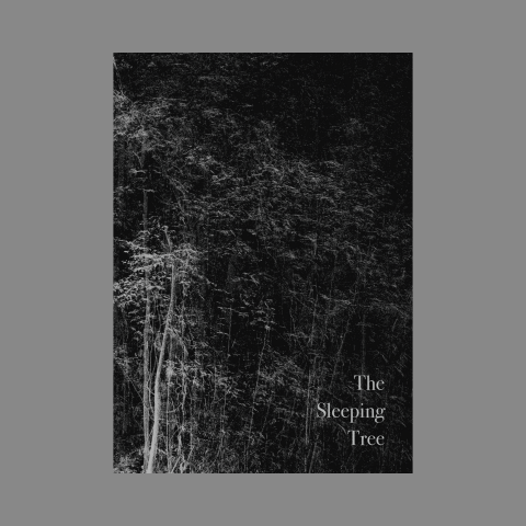 the sleeping tree publication 1