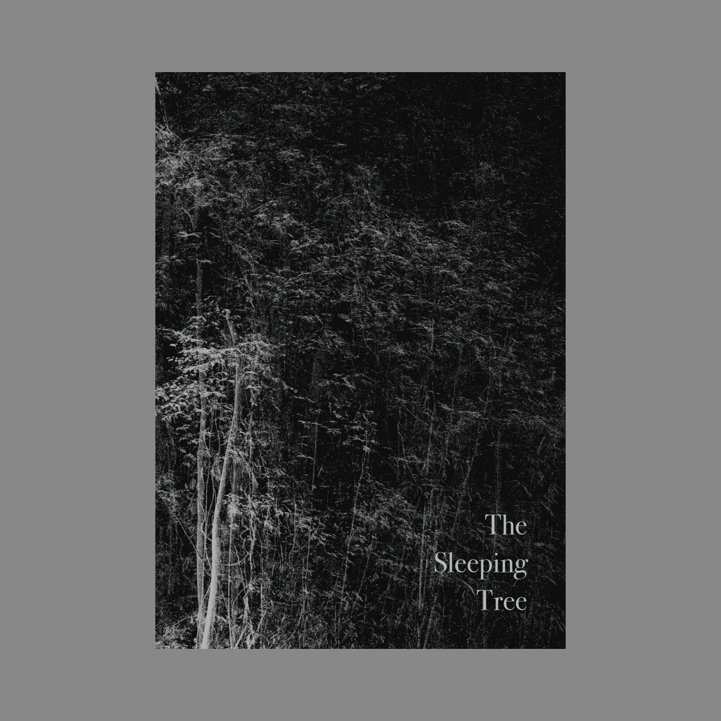 The Sleeping Tree Publication