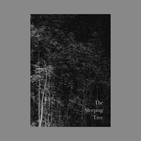 PRE-ORDER The Sleeping Tree Publication